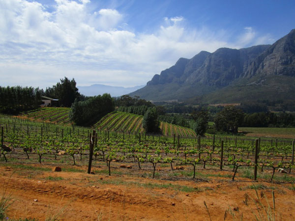 A view of the Jonkershoek mountains which epitomises the wonderful scenery of the Winelands.